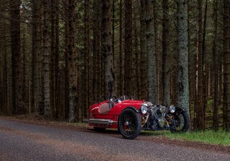 Still_in_the_woods!.jpg