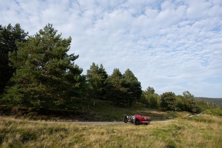 M3W Forest of Birse-7152-2.jpg